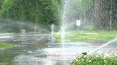 разбрызгиватель : Garden Irrigation. Automatic sprinkler watering system for plants and lawn.
