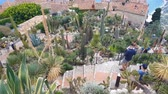 aloes : People walking in the Exotic Garden, Eze, French Riviera