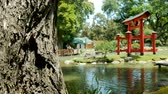 pontes : Pagoda in the Japanese Garden (Jardn Japons) in Buenos Aires, capital of Argentina. Stock Footage