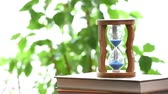 crumble : Real time. An hourglass with a blurry tree leaf. With copy space.