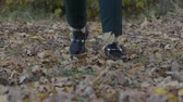 setembro : Young woman walking in the autumn park. female feet closeup. girl walking on fallen leaves.