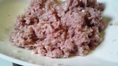 pork meat : Mixes minced meat. Home cooking, cooking homemade dumplings.