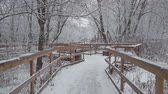 kluzký : Winter day, there was a lot of fresh white snow in the park. Slow traffic on a wooden bridge in the park. Dostupné videozáznamy