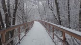 kaygan : Winter day, a lot of fresh snow fell. The movement of the camera along the wooden bridge through the park.