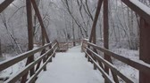 滑りやすい : Winter day, a lot of fresh snow fell. The movement of the camera along the wooden bridge through the park.