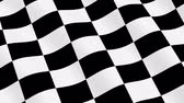 fertig : Checkered laufende Markierungsfahne - 3D-Animation, Seamless Loop