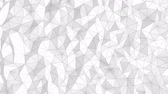 White polygonal geometric abstract background