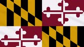 usa flagge : Maryland flag flutters in the wind, loop for background Stock Footage
