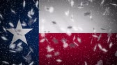 テキサス州 : Texas flag falling snow, New Year and Christmas background, loop.