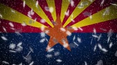 アリゾナ州 : Arizona flag falling snow loopable, New Year and Christmas background, loop.
