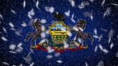 pensilvanya : Pennsylvania flag falling snow, New Year and Christmas background, loop. Stok Video