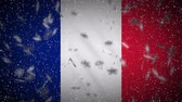 France flag falling snow loopable, New Year and Christmas background, loop. Stok Video