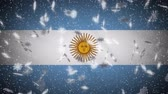 Argentina flag falling snow loopable, New Year and Christmas background, loop. Stok Video