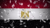 Egypt flag falling snow loopable, New Year and Christmas background, loop Stok Video