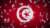 Tunisia flag falling snow loopable, New Year and Christmas background, loop. Stok Video