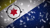 Bonaire flag falling snow loopable, New Year and Christmas background, loop.