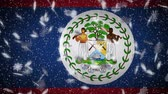 Belize flag falling snow loopable, New Year and Christmas background, loop.