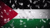 palestine : Palestine flag falling snow loopable, New Year and Christmas background, loop. Stock Footage