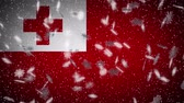 monarşi : Tonga flag falling snow loopable, New Year and Christmas background, loop. Stok Video