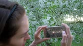 floreios : Close up - Female takes photos of blooming lilac using smartphone in beautiful spring garden.