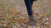 striding : close up - womans legs walking on the background of fallen, rustling autumn leaves on forest road
