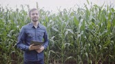 agronomist : Portrait of young attractive farmer with tablet standing in corn fiel Stock Footage