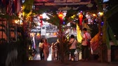 calandra : Chiangmai Thailand - November 2015: Crowd of Thai people and tourist at the pier Loi Krathong Festival in Chiangmai Vídeos
