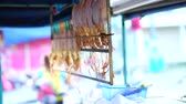 tentáculo : Dried squid hanging on rail for selling at Asian street stall market Stock Footage