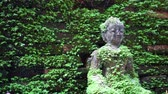 buddhist : Moss cover buddha statue, calm peaceful religious concept