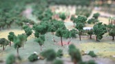 miniatűr : Trees Mountain Miniature Landscape Small Plan Model