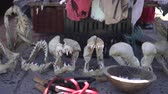 dead animal : South Africa Souvenir Stall Tourist Market Sell Shark Jaws And Teeth