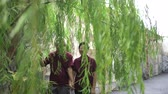 Happy Asian elder couple walking through willow tree in the park