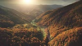 Aerial View Drone Flight over fantastic autumn mountain landscape. Green meadows, orange hills, pine tree forests against sunset cloudy sky. Carpathians, Ukraine, Europe. Colorful toning filter. 4K