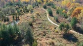 objevit : Empty road in the forest. Aerial view of a road in the middle of the lush pine and maple forest from above at fall season.