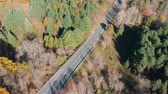 Top view of the empty asphalt road in the middle of the forest. American fall season nature at very bright sunny day. Stock Footage