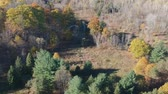 penhasco : Aerial view of colored autumn trees in the forest. Drone panning.