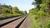 canadense : Still and calm landscape of the railway at very hot summer day, the air is moving. Stock Footage