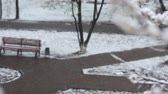 снегопад : Bad weather in spring city park. Snowfall on flowering trees, alleys, benches. Empty deserted square and snowstorm video background