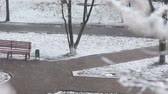 marcha : Bad weather in spring city park. Snowfall on flowering trees, alleys, benches. Empty deserted square and snowstorm video background