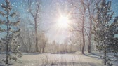 jinovatka : Snowfall in beautiful winter park. Christmas mood landscape. Seamless loop