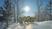 felicidades : Text 2020 in forest new year congratulations. Winter holidays celebration concept. Seamless loop 3D render animation compositing with live video Archivo de Video