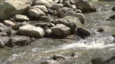 ясно : Stormy water flow between the stones. Close-up. Sunny weather. Slow motion