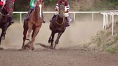 course de chevaux : Horse racing at the summer racetrack. Riders on horses undergo a turn. Slow motion