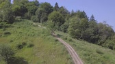 motosiklet : Summer cloudless day. Forest dirt road. Motorcycle racing. Aerial view