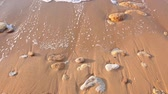 summer concept : Morning light on a sandy beach. Close-up. Round pebbles Stock Footage
