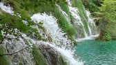 葉 : Forest river on a summer day. Many waterfall streams on a grassy slope. Slow motion