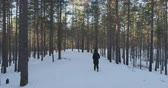 назад : Aerial tracking of walking teen girl in winter pine forest in daytime