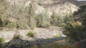 eastern sierra : gimbal forward walk shot of landscape on merced river