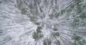 спуск : Aerial top view descent fly over winter frozen pine forest Стоковые видеозаписи