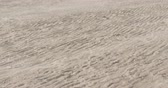meddő : Slow motion wind blows sand on a beach at midday